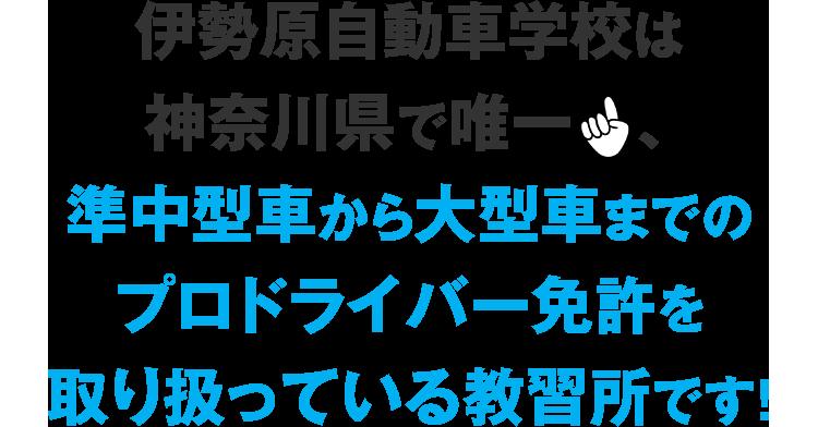 伊勢原自動車学校は神奈川県で唯一、大型からけん引まで、全てのプロドライバー免許を取り扱っている教習所です!
